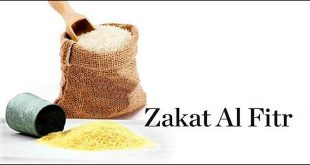 Zakat al-Fitra according to Ayatollah Sistani's Islamic Law